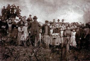 Weinlese-1900